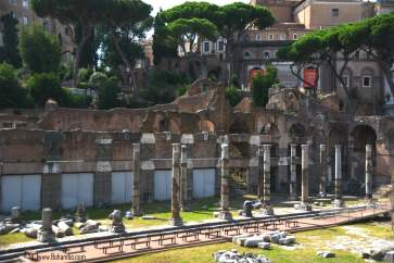 Roman Forum (Marketplace)