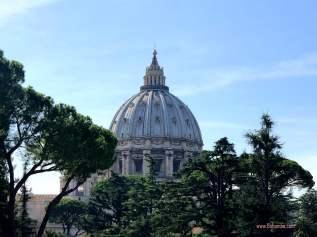 Vatican dome 1