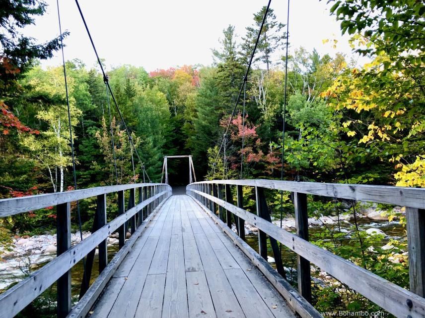 KH Lincoln Woods Bridge