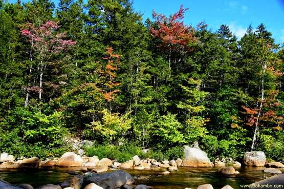 KH Swift River