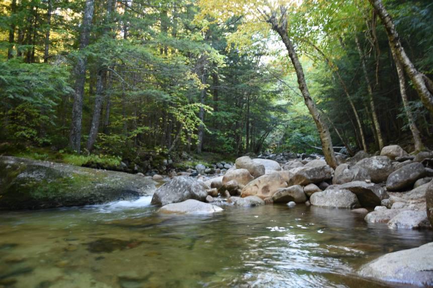 National Park.JPG