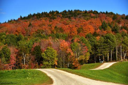 Vermont Meadows