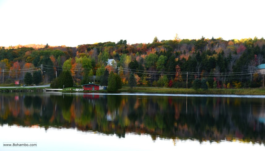 Vermont Reflections